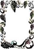 Шаблон плаката с плодами и ягодами руки вычерченными для дизайна меню рынка фермеров иллюстрация вектора