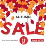 Шаблон с листьями, падение знамени продажи осени выходит для ходя по магазинам продажи Дизайн знамени Плакат, карточка, ярлык, зн бесплатная иллюстрация