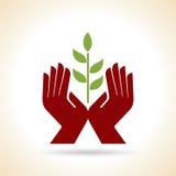 Шаблон дизайна здоровья природы зеленого цвета лист рук естественный Стоковые Фотографии RF