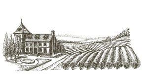 Шаблон дизайна логотипа вектора виноградника деревня или Стоковая Фотография