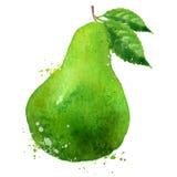 Шаблон дизайна логотипа вектора ГРУШИ плодоовощ или еда Стоковое Изображение