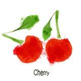 Шаблон дизайна логотипа вишни Стоковые Изображения