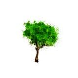 Шаблон дизайна логотипа дерева Стоковое Изображение