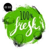 Шаблон дизайна veggies фермера 100% свежий Зеленый грубый круг с письмами покрашенными рукой Овощи стиля эскиза гравировки Стоковые Изображения RF