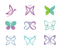 Шаблон логотипа бабочки Стоковое Изображение RF