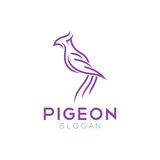 Шаблон логотипа голубя Стоковые Фотографии RF
