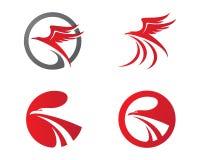 Шаблон логотипа сокола Стоковые Изображения RF