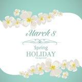 Шаблон поздравительной открытки дня ` s женщин Стоковые Фото