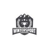 Шаблон спорта зимы Стоковое Изображение RF