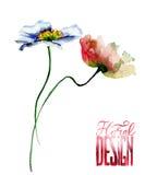 Шаблон для карточки с полевыми цветками Стоковые Фотографии RF
