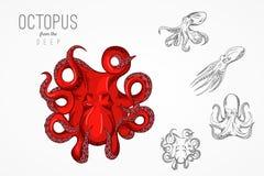 Шаблон для логотипов, ярлыки и эмблемы с планом silhouette осьминог также вектор иллюстрации притяжки corel Стоковое Фото