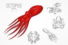 Шаблон для логотипов, ярлыки и эмблемы с планом silhouette осьминог также вектор иллюстрации притяжки corel Стоковые Изображения