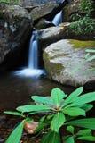 шагает водопад Стоковое Фото