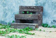 шагает деревянно стоковое фото
