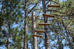 шагает деревянно Стоковая Фотография