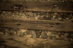 шагает древесина Стоковая Фотография RF