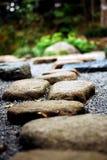 шагая камень Стоковые Фотографии RF