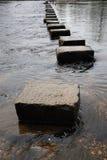 шагая камни Стоковые Изображения RF