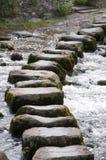шагая камни Стоковая Фотография RF