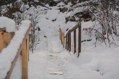 Шаги в зиму Стоковые Изображения RF