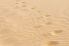 Шаги в сухой горячий песок. Стоковая Фотография