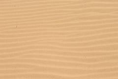 Шаги в сухой песок. Стоковые Изображения