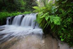 Шаги известковой скалы создают водопад стоковые изображения rf