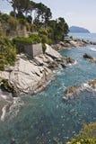 шаги моря к Стоковые Изображения RF