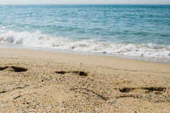 Шаги на песке приставают к берегу, море на предпосылке Стоковое Изображение RF