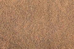 Шаги на песок Стоковые Фото