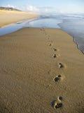 шаги пляжа Стоковое Изображение RF