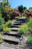 шаги сада Стоковые Фотографии RF