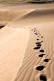 шаги Стоковые Изображения