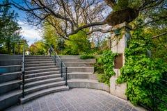 Шаги Baldwin на парк Spadina, в центре города Торонто, Онтарио Стоковая Фотография