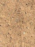 Шаги Sandy на след парка Стоковые Изображения RF