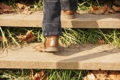 шаг вверх Стоковая Фотография RF