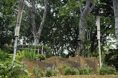 Шаг коричневых каменных лестниц с зеленым растением около пути прогулки Стоковое Изображение