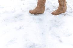 Шаг на замороженную землю Стоковое Фото