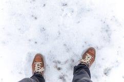 Шаг на замороженную землю Стоковые Изображения