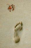 Шаг на пляже Стоковое Изображение