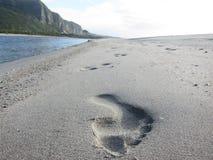 Шаг на пляж Стоковое Изображение