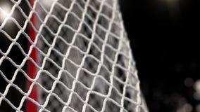 Шайба хоккея летает в сеть на черной предпосылке с вспышками фото В начале движения ускорено ход после этого медленно