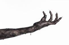 Шайка бандитов смерти, идти смертельно, тема зомби, тема хеллоуина, руки зомби, белая предпосылка, руки мумии Стоковая Фотография