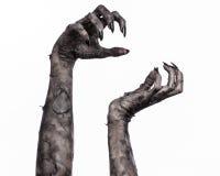 Шайка бандитов смерти, идти смертельно, тема зомби, тема хеллоуина, руки зомби, белая предпосылка, руки мумии Стоковое Изображение