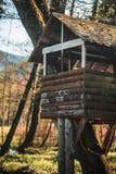 Шалаш на дереве леса осени стоковое изображение