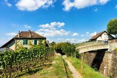 Шале на тропе Lavaux Oron Swis террас виноградника Lavaux Стоковые Фото