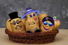 Шальная Zany семья картошки иллюстрация штока