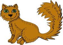 Шальной кот Стоковое Фото