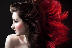 шальные волосы Стоковое Фото