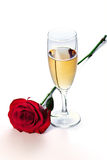 шампанское подняло Стоковое фото RF